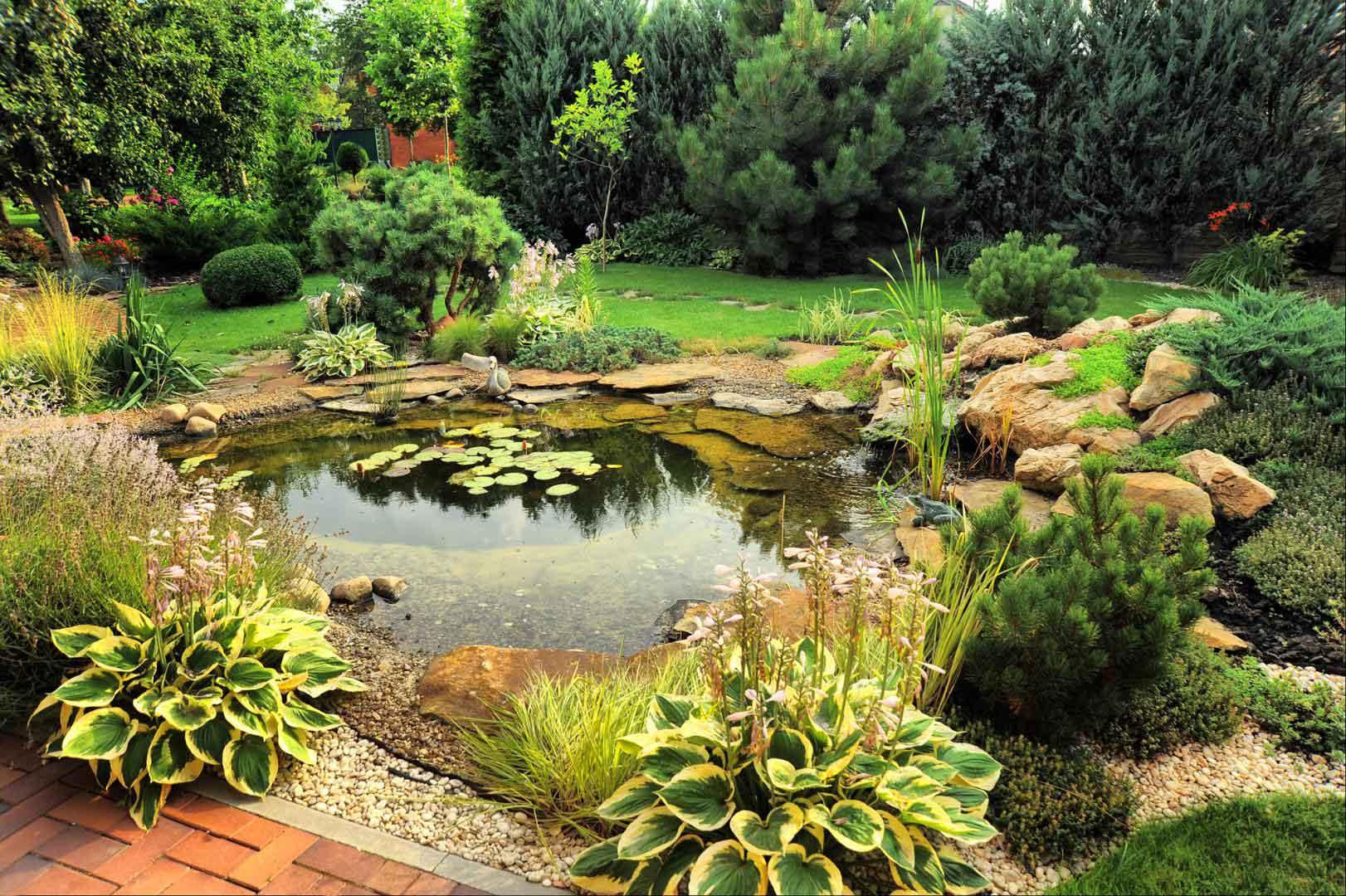 Aménagement bassin d'eau